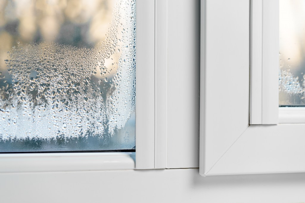 Fogged window glass